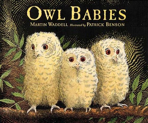 owl_babies